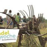 waldgartentour_wandelwoche_oekohof_3